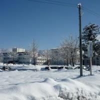 H29冬学院